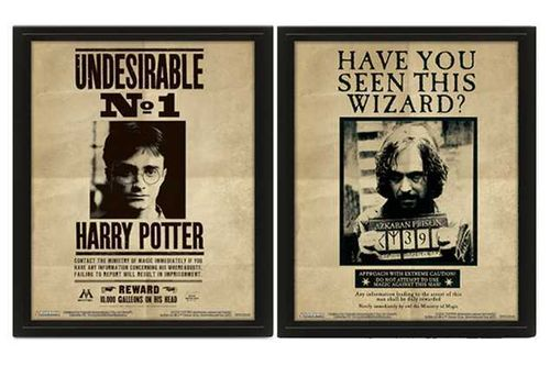 HARRY POTTER -  SORIUS BLACK 3D FRAME